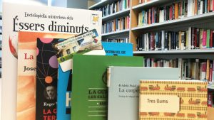 llibres biblioteca