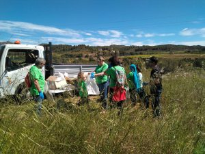 CLEAN UP DAY 2017-3