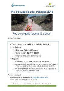 oferta_laboral_DIPTA_forestal2018-001