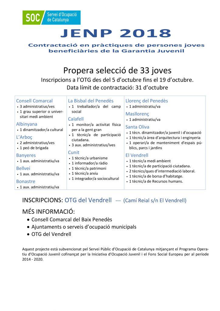 cartellJENP19comarcaldef_-001