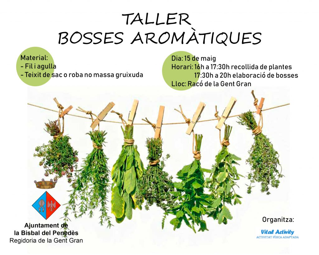 taller_plantes_aromatiques