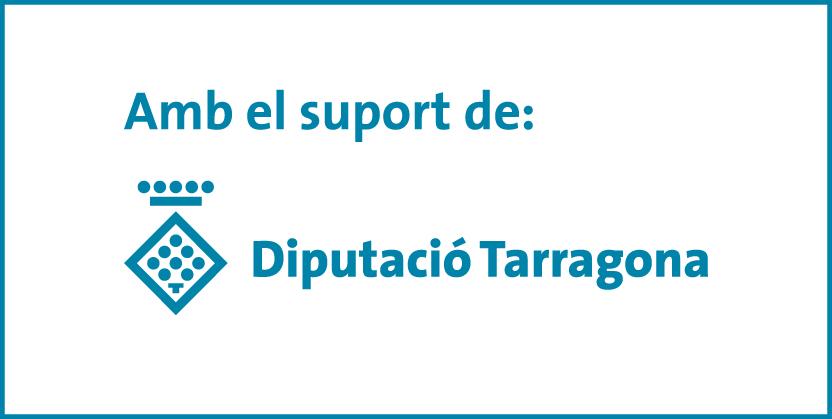Subvencions Diputació 2020