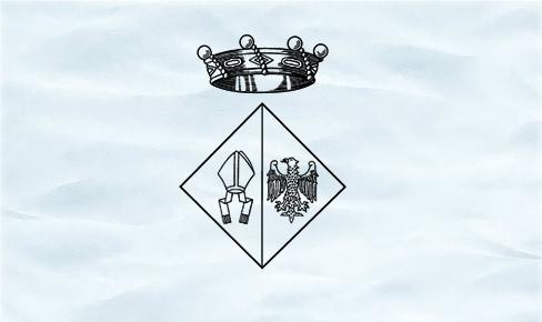 El Ple Ordinari del passat 19 de juny va aprovar el primer ROM de l'Ajuntament de La Bisbal del Penedès