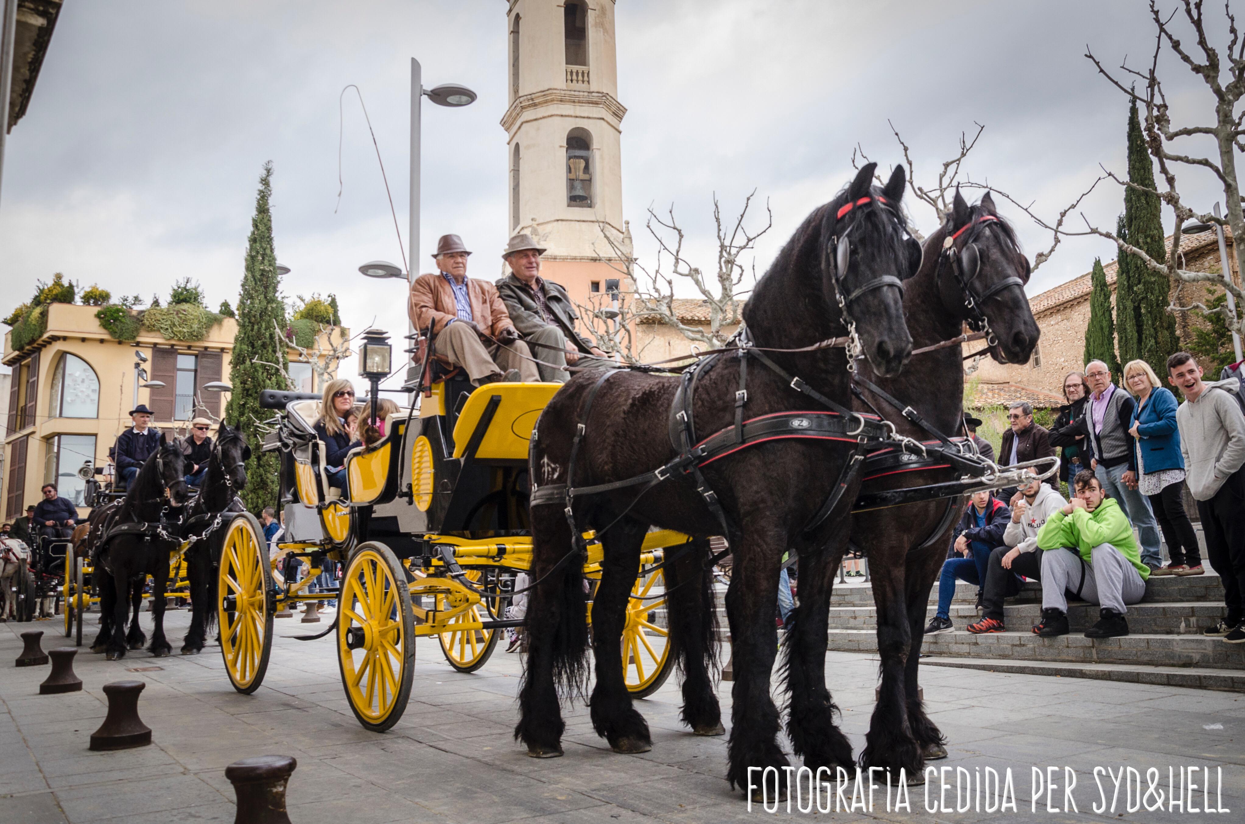 27 cavalls i 36 carros han participat aquest diumenge als Tres Tombs de La Bisbal
