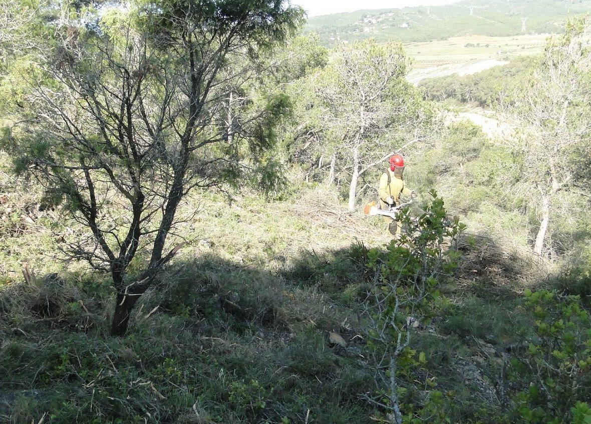 L'Ajuntament ha fet un conveni de col.laboració social per contractar una persona perquè desbrossi zones verdes del municipi