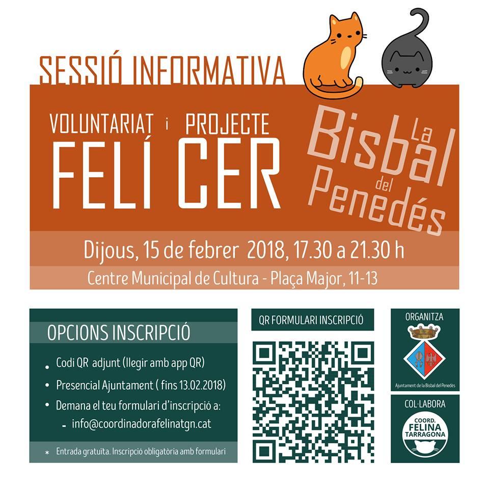 L'Ajuntament de la Bisbal del Penedès impulsa la gestió ètica de colònies felines mitjançant un projecte CER