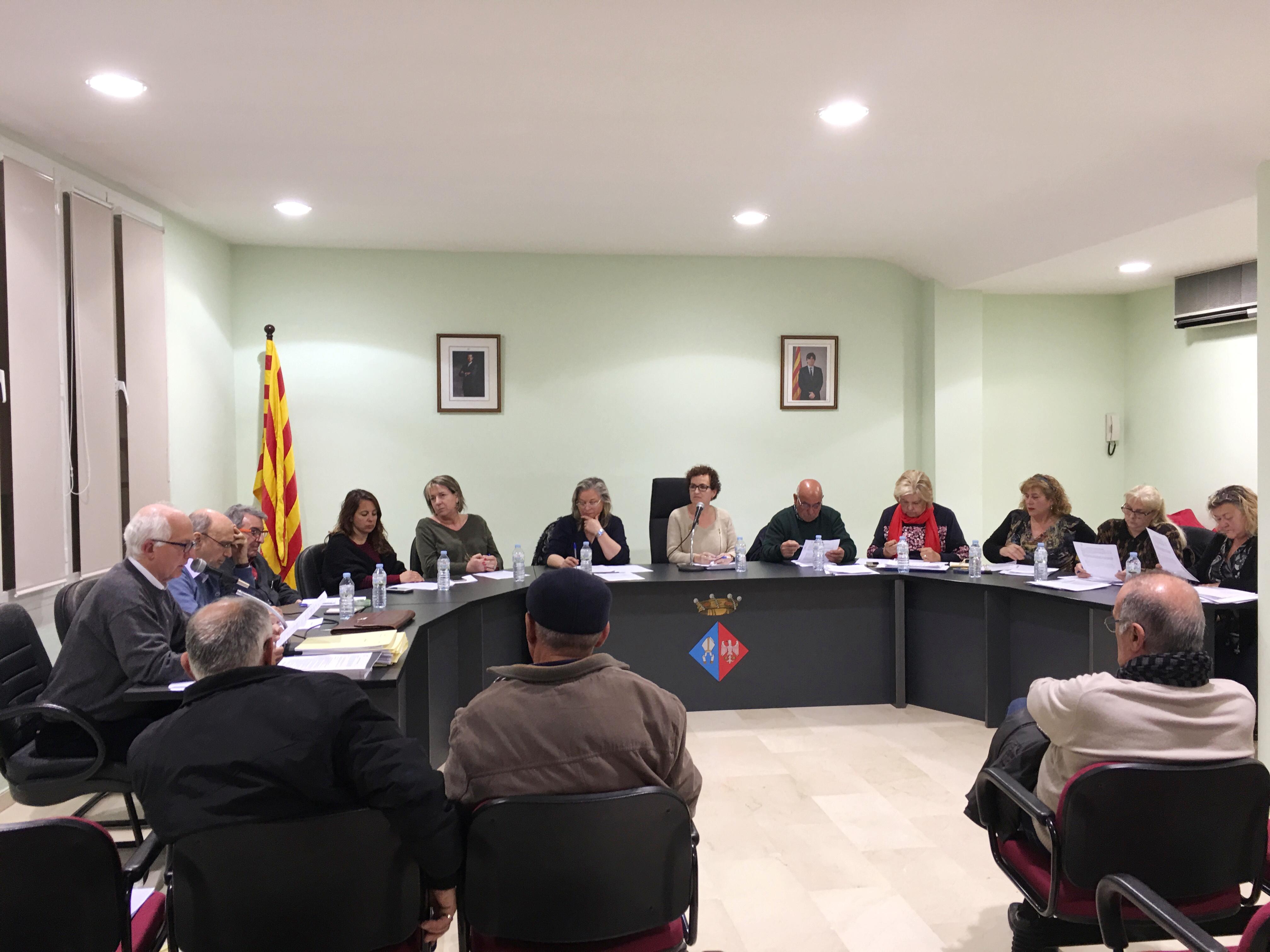 Resum dels punts tractats al Ple Ordinari de 19 de març de 2018