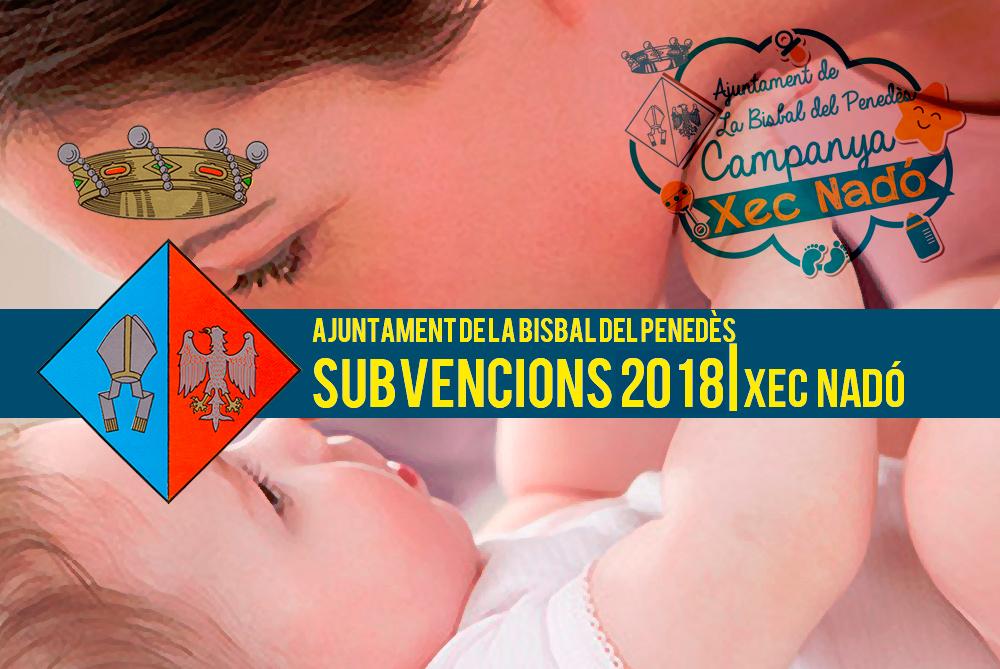 S'ha obert el termini per demanar les subvencions de natalitat i adopció