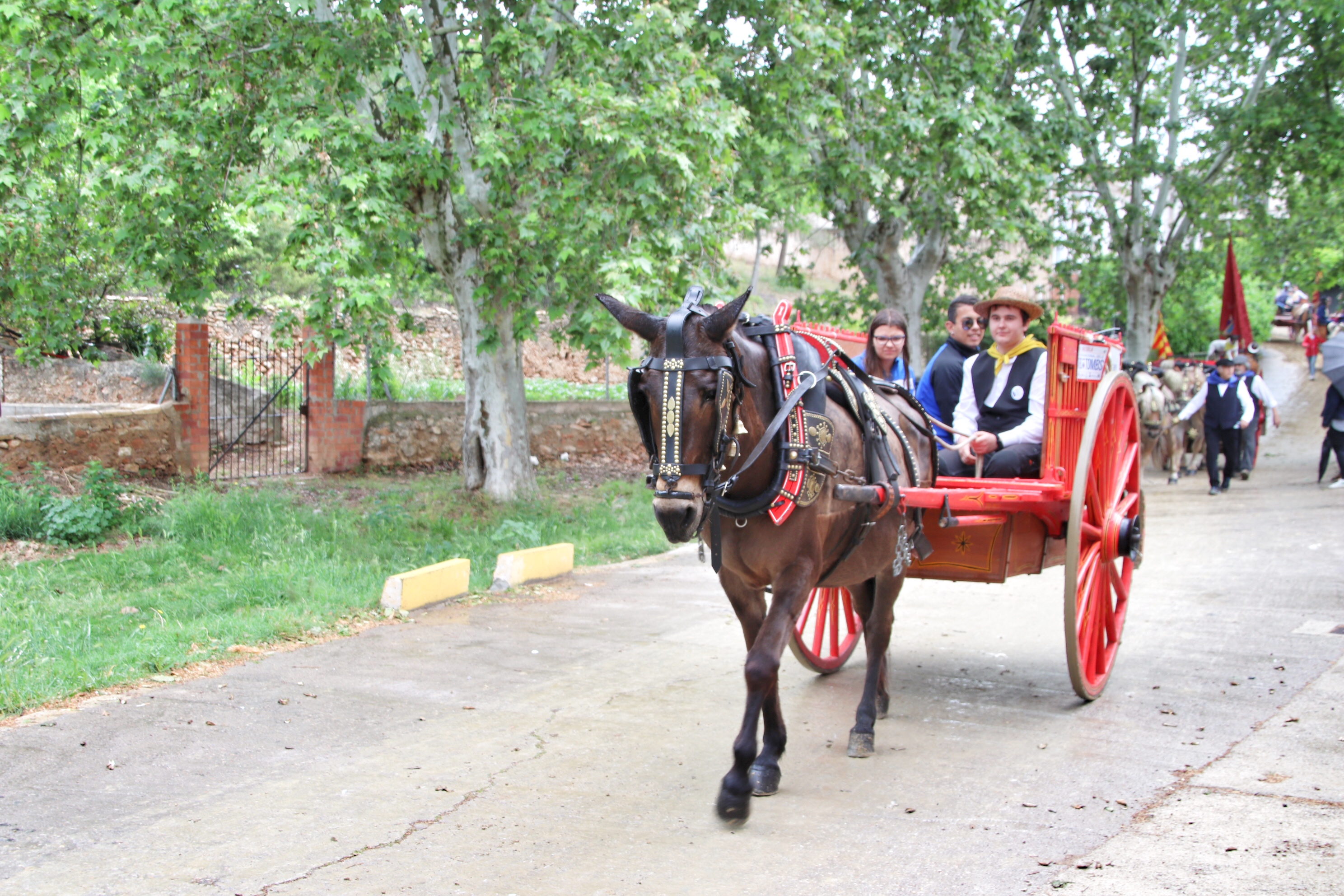 La Bisbal del Penedès ha acollit la celebració de la Trobada Nacional dels Tres Tombs aquest diumenge 6 de maig