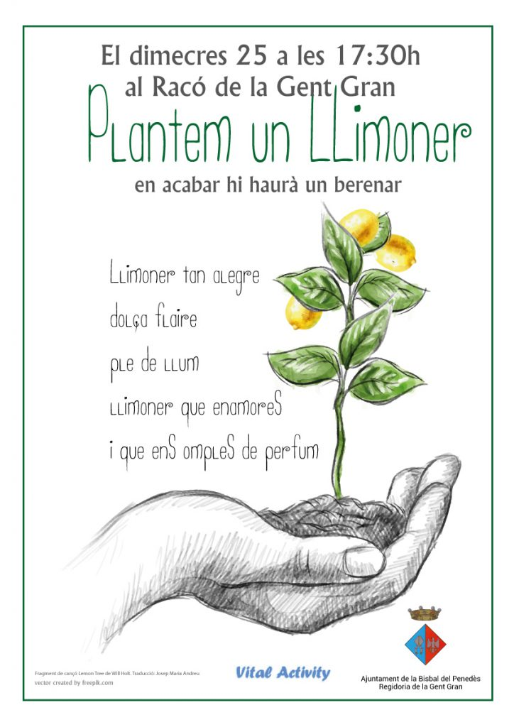 PLANTEM_LLIMONER_2