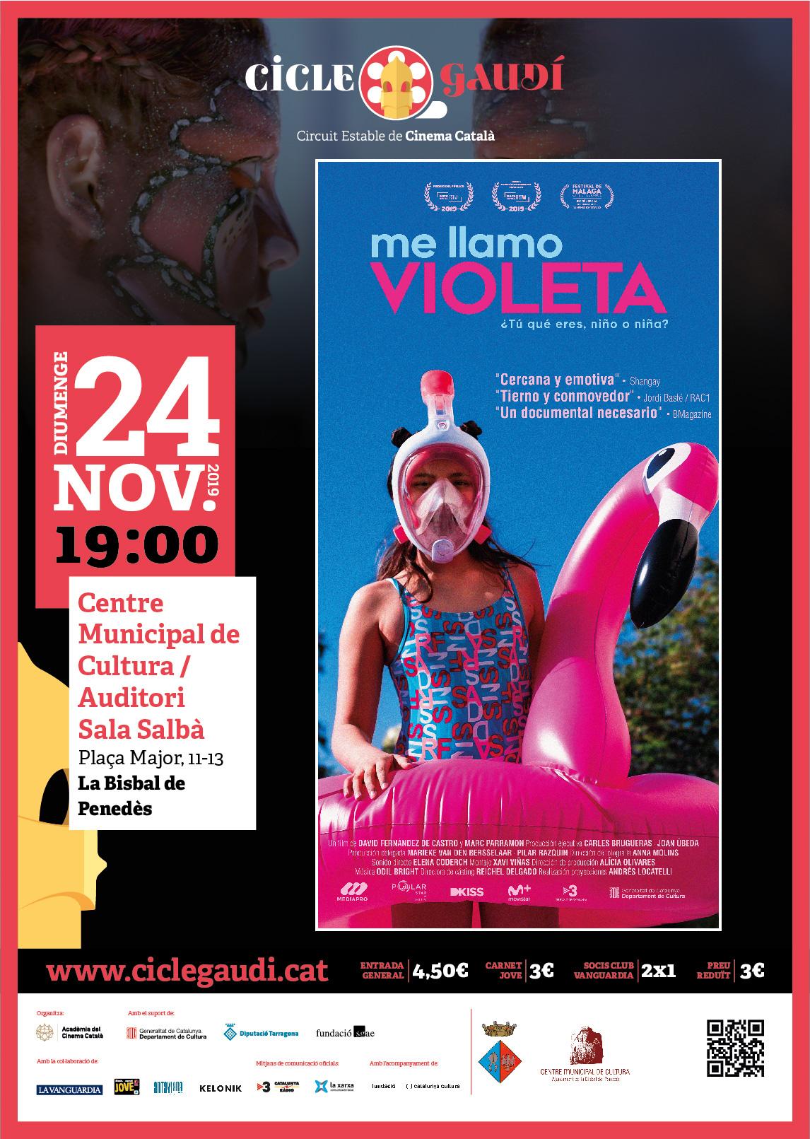 El diumenge 24 de novembre a les 19h podreu veure la pel·lícula 'Me llamo Violeta' al CMC