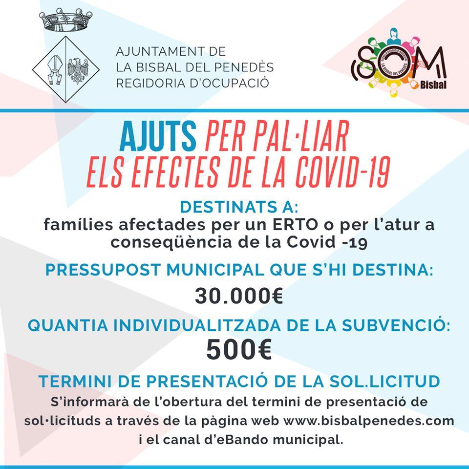 Informació sobre les subvencions per a famílies afectades per un ERTO o per l'atur a conseqüència de la Covid-19