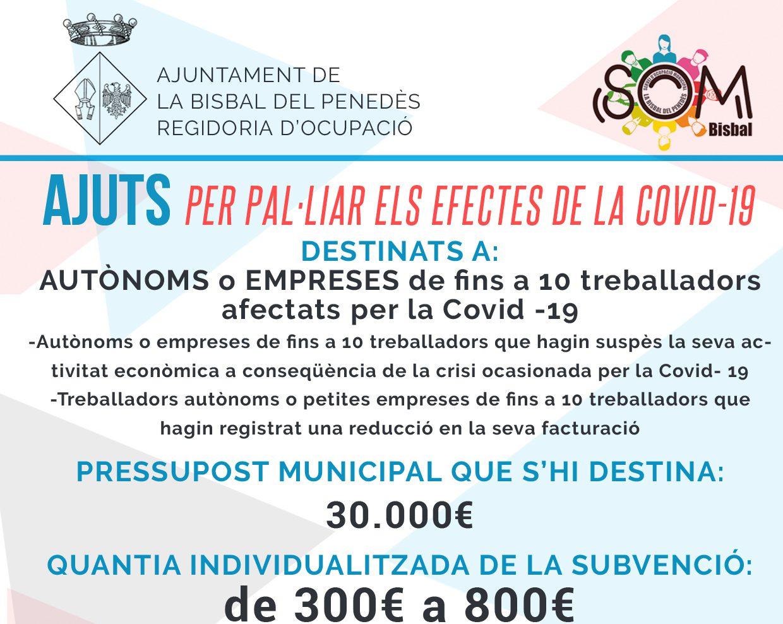 S'aproven els beneficiaris de les subvencions per a autònoms/es i petites empreses afectades per la crisi sanitària ocasionada per la Covid-19