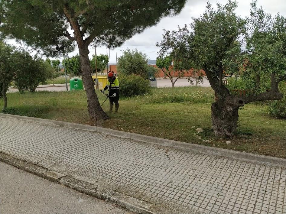 La Regidoria de Medi Ambient està duent a terme treballs de desbrossament a tot el municipi