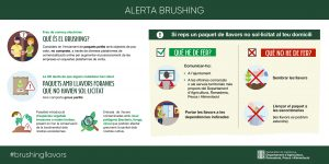 ALERTA BRUSHING
