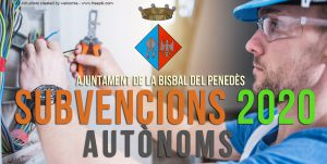 SUBVENCIONS_2020_AUTONOMS