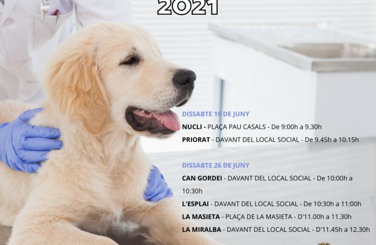 Els dissabtes 19 i 26 de juny  podreu vacunar els vostres gossos a la Bisbal