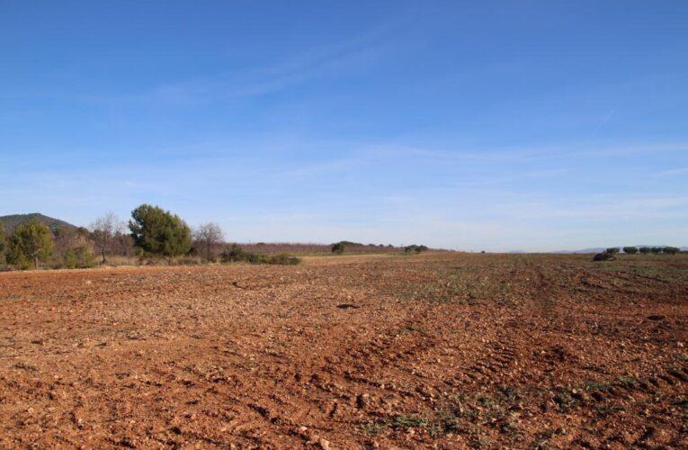 La Ponència d'energies renovables de la Generalitat ha desestimat el recurs de reposició presentat per l'empresa promotora del parc solar fotovoltaic les Planes