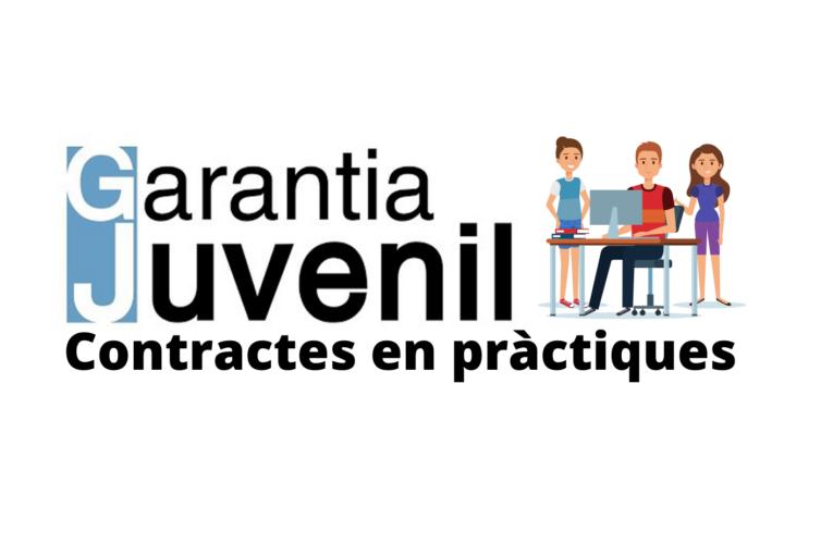S'obre el termini per accedir a tres contractes en pràctiques remunerades -per a joves- en el marc del programa de Garantia Juvenil